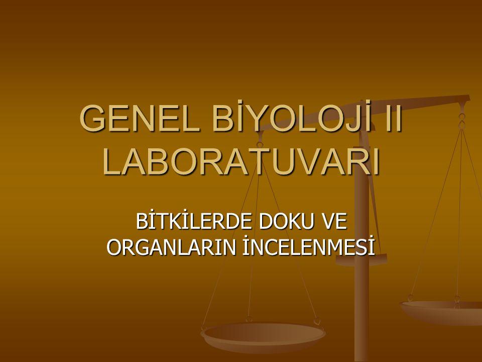 GENEL BİYOLOJİ II LABORATUVARI BİTKİLERDE DOKU VE ORGANLARIN İNCELENMESİ