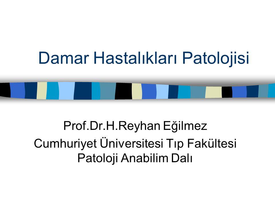 Damar Hastalıkları Patolojisi Prof.Dr.H.Reyhan Eğilmez Cumhuriyet Üniversitesi Tıp Fakültesi Patoloji Anabilim Dalı