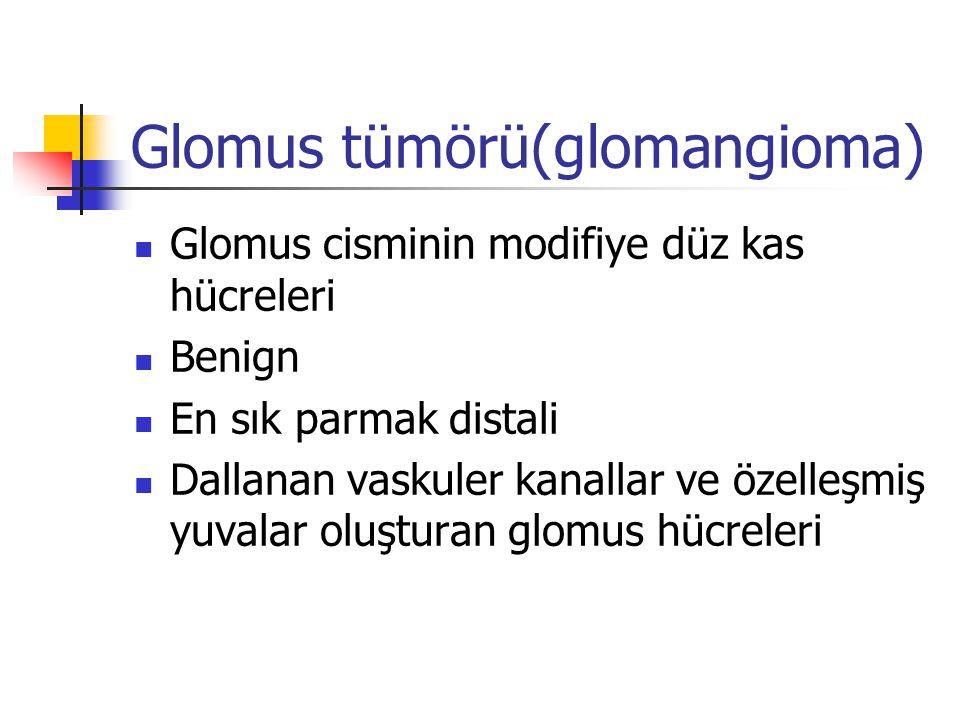 Glomus tümörü(glomangioma) Glomus cisminin modifiye düz kas hücreleri Benign En sık parmak distali Dallanan vaskuler kanallar ve özelleşmiş yuvalar ol