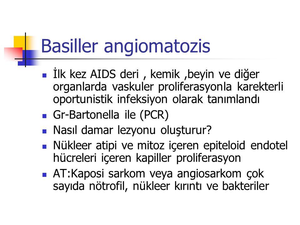 Basiller angiomatozis İlk kez AIDS deri, kemik,beyin ve diğer organlarda vaskuler proliferasyonla karekterli oportunistik infeksiyon olarak tanımlandı