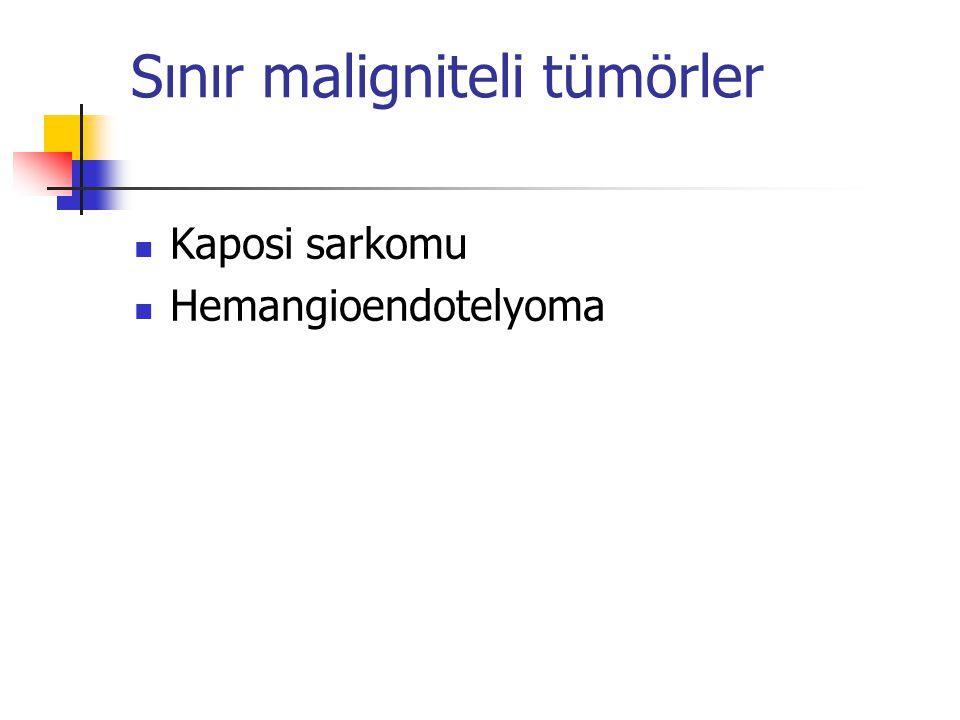 Malign tümörler Angiosarkom Hemangioperisitoma