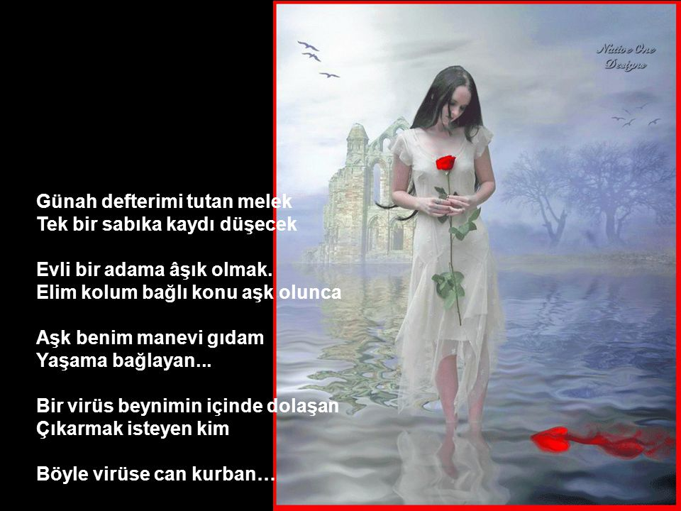 Poetry Book I Love You Mr Can Akın Author - Poet