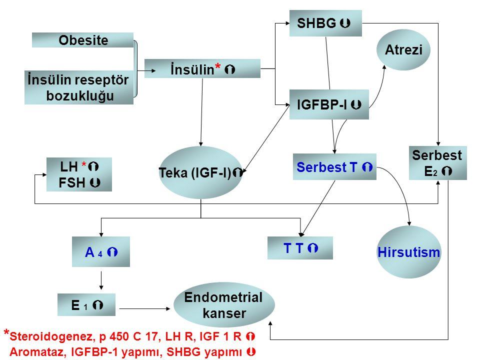Obesite İnsülin reseptör bozukluğu İnsülin *  Serbest E 2  LH *  FSH  Serbest T  A 4  SHBG  Atrezi Teka (IGF-I)  Endometrial kanser T T  E 1