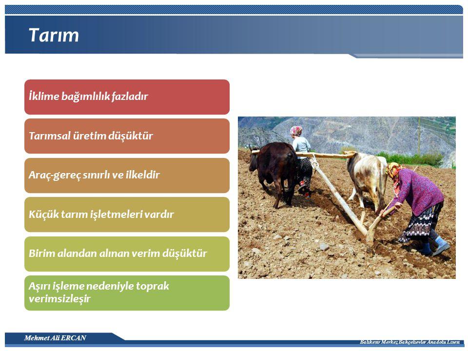 Mehmet Ali ERCAN Balıkesir Merkez Bahçelievler Anadolu Lisesi Tarım İklime bağımlılık fazladırTarımsal üretim düşüktürAraç-gereç sınırlı ve ilkeldirKüçük tarım işletmeleri vardırBirim alandan alınan verim düşüktür Aşırı işleme nedeniyle toprak verimsizleşir