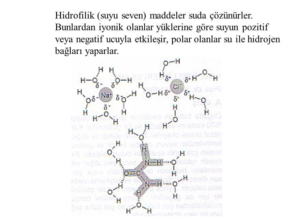 Hidrofilik (suyu seven) maddeler suda çözünürler. Bunlardan iyonik olanlar yüklerine göre suyun pozitif veya negatif ucuyla etkileşir, polar olanlar s