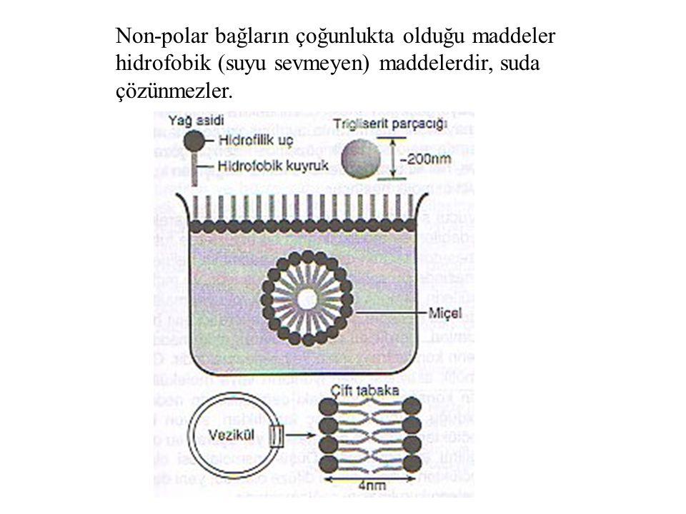 Non-polar bağların çoğunlukta olduğu maddeler hidrofobik (suyu sevmeyen) maddelerdir, suda çözünmezler.