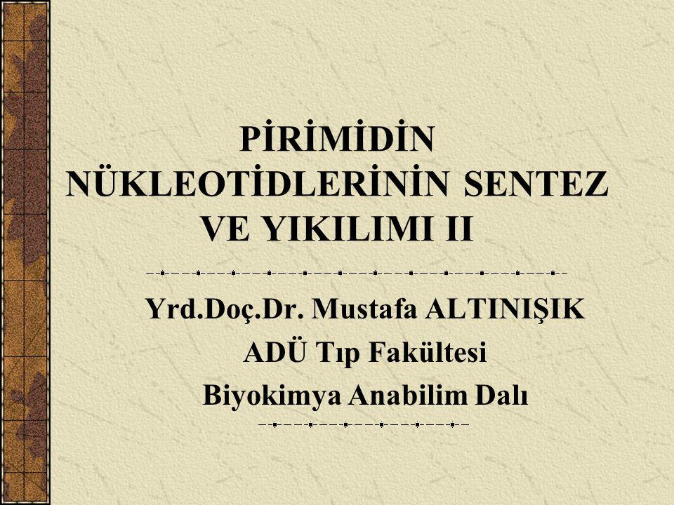 PİRİMİDİN NÜKLEOTİDLERİNİN SENTEZ VE YIKILIMI II Yrd.Doç.Dr. Mustafa ALTINIŞIK ADÜ Tıp Fakültesi Biyokimya Anabilim Dalı