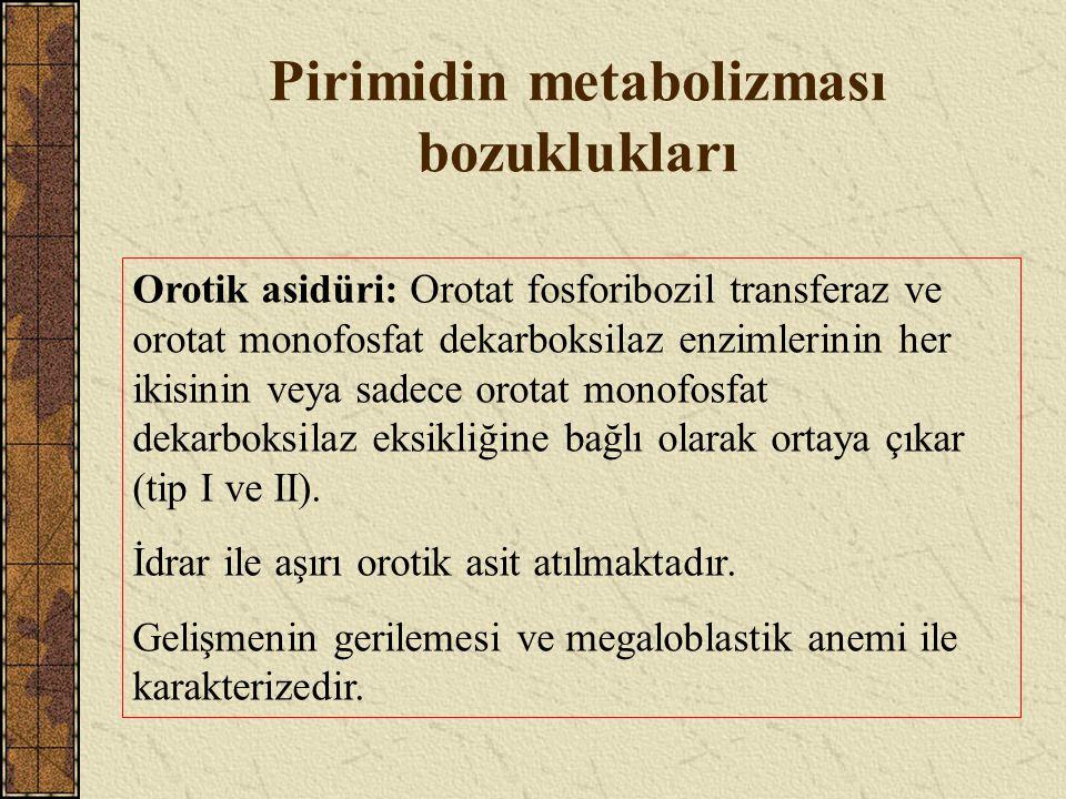 Pirimidin metabolizması bozuklukları Orotik asidüri: Orotat fosforibozil transferaz ve orotat monofosfat dekarboksilaz enzimlerinin her ikisinin veya