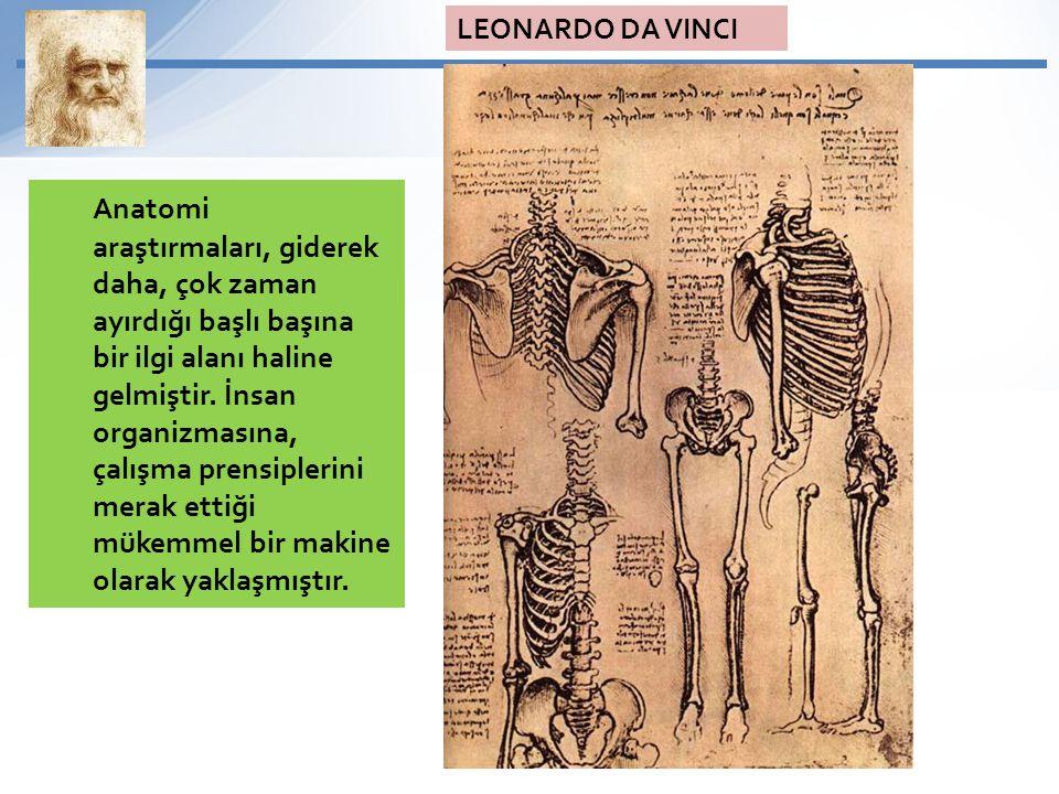 Anatomi araştırmaları, giderek daha, çok zaman ayırdığı başlı başına bir ilgi alanı haline gelmiştir. İnsan organizmasına, çalışma prensiplerini merak