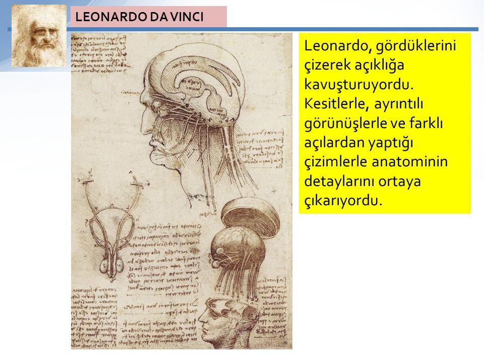 Leonardo, gördüklerini çizerek açıklığa kavuşturuyordu. Kesitlerle, ayrıntılı görünüşlerle ve farklı açılardan yaptığı çizimlerle anatominin detayları