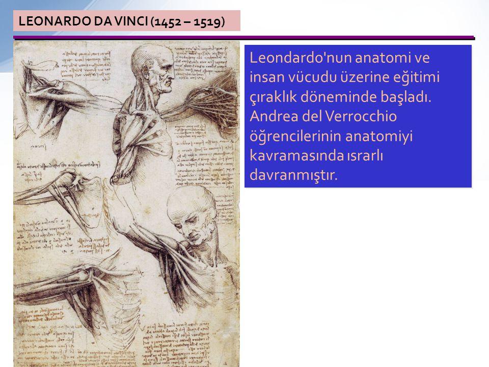 LEONARDO DA VINCI (1452 – 1519) Leonardo Verrocchio nun yanında Lorenzo di Credi ve Pietro Perugino gibi ünlü sanatçılarla çalışma fırsatı buldu.