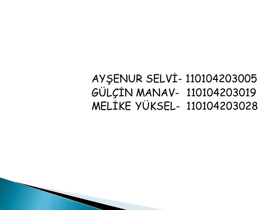 AYŞENUR SELVİ- 110104203005 GÜLÇİN MANAV- 110104203019 MELİKE YÜKSEL- 110104203028
