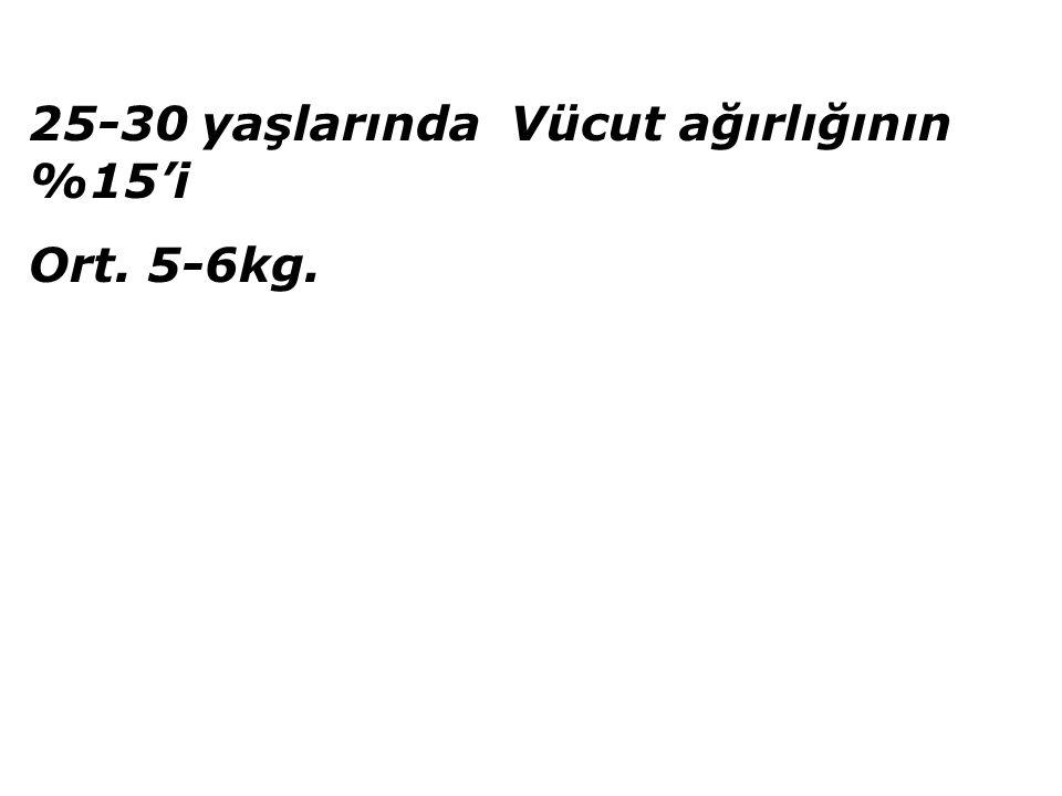 25-30 yaşlarında Vücut ağırlığının %15'i Ort. 5-6kg.
