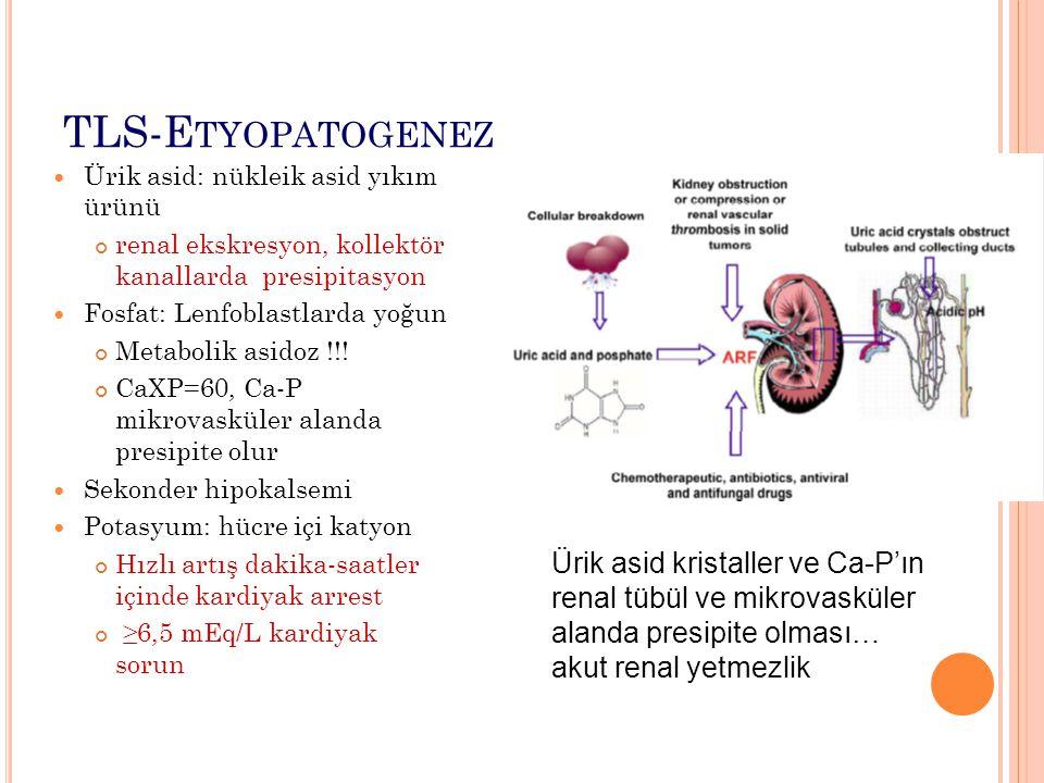 TLS-E TYOPATOGENEZ Ürik asid: nükleik asid yıkım ürünü renal ekskresyon, kollektör kanallarda presipitasyon Fosfat: Lenfoblastlarda yoğun Metabolik asidoz !!.