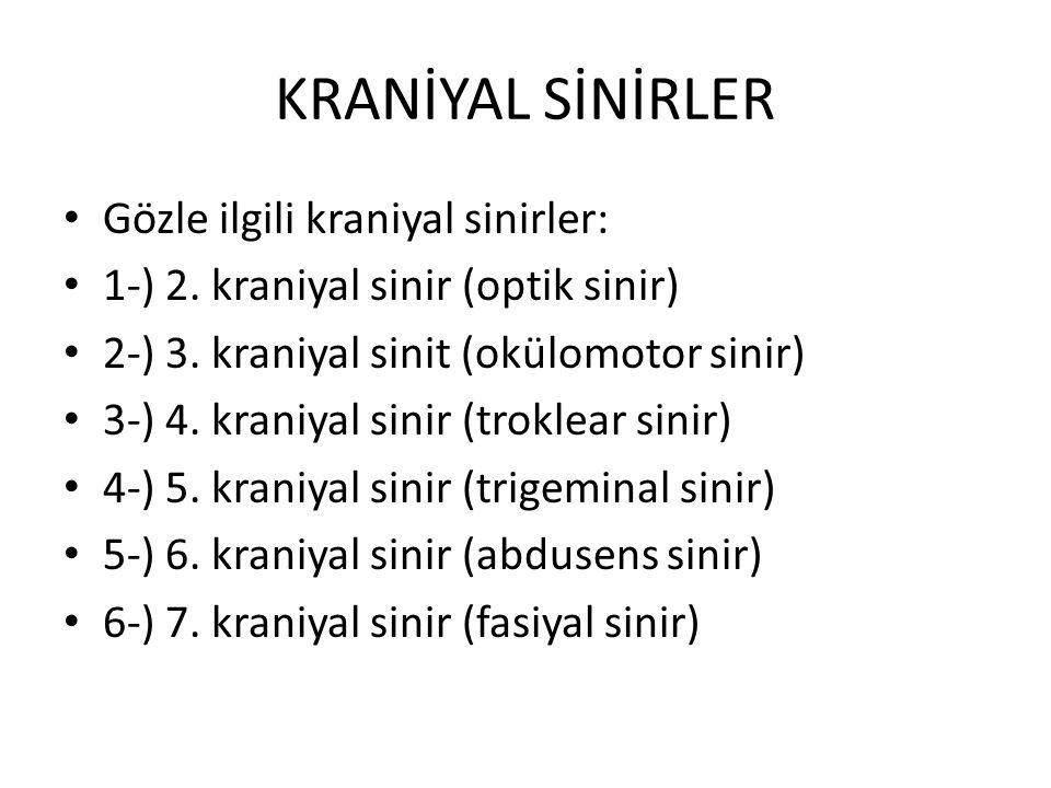 KRANİYAL SİNİRLER Gözle ilgili kraniyal sinirler: 1-) 2. kraniyal sinir (optik sinir) 2-) 3. kraniyal sinit (okülomotor sinir) 3-) 4. kraniyal sinir (