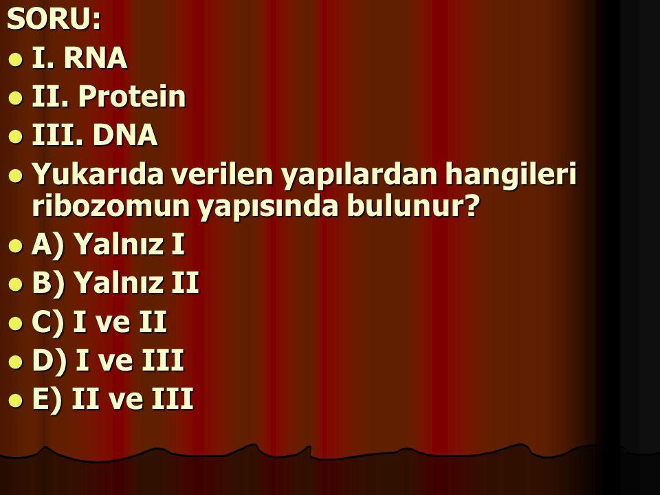 SORU: I. RNA II. Protein III. DNA Yukarıda verilen yapılardan hangileri ribozomun yapısında bulunur? A) Yalnız I B) Yalnız II C) I ve II D) I ve III E