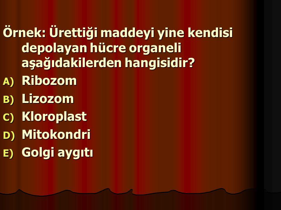 Örnek: Ürettiği maddeyi yine kendisi depolayan hücre organeli aşağıdakilerden hangisidir? A) R ibozom B) L izozom C) K loroplast D) M itokondri E) G o