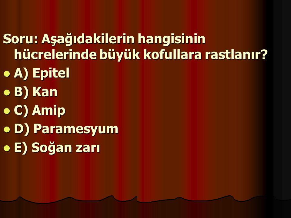 Soru: Aşağıdakilerin hangisinin hücrelerinde büyük kofullara rastlanır? A) Epitel A) Epitel B) Kan B) Kan C) Amip C) Amip D) Paramesyum D) Paramesyum