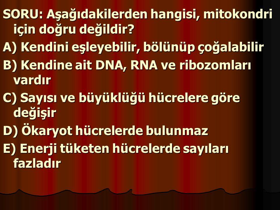 SORU: Aşağıdakilerden hangisi, mitokondri için doğru değildir? A) Kendini eşleyebilir, bölünüp çoğalabilir B) Kendine ait DNA, RNA ve ribozomları vard