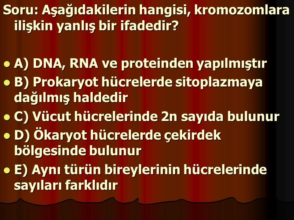 Soru: Aşağıdakilerin hangisi, kromozomlara ilişkin yanlış bir ifadedir? A) DNA, RNA ve proteinden yapılmıştır B) Prokaryot hücrelerde sitoplazmaya dağ