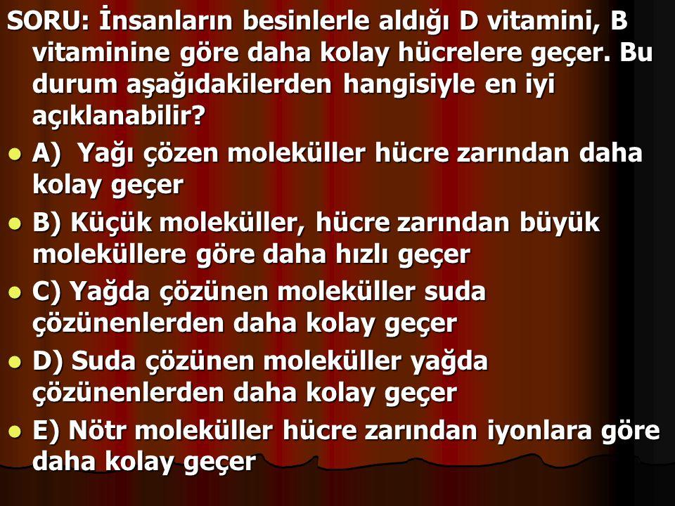 SORU: İnsanların besinlerle aldığı D vitamini, B vitaminine göre daha kolay hücrelere geçer. Bu durum aşağıdakilerden hangisiyle en iyi açıklanabilir?
