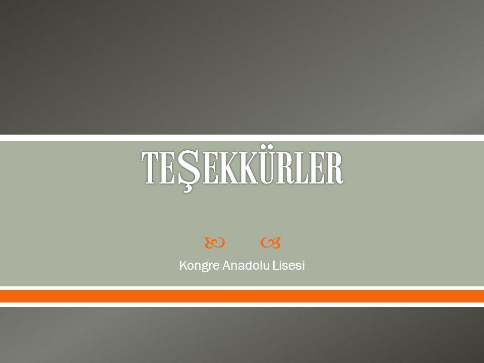  Kongre Anadolu Lisesi