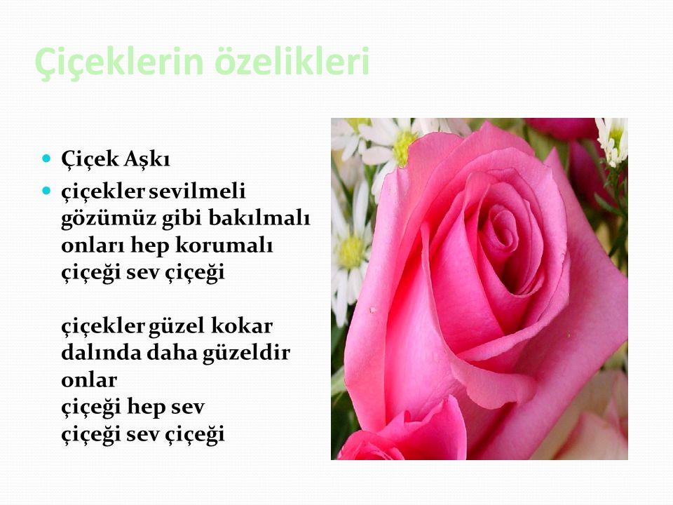 Çiçeklerin özelikleri Çiçek Aşkı çiçekler sevilmeli gözümüz gibi bakılmalı onları hep korumalı çiçeği sev çiçeği çiçekler güzel kokar dalında daha güzeldir onlar çiçeği hep sev çiçeği sev çiçeği