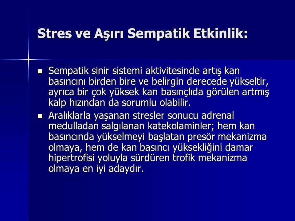 Stres ve Aşırı Sempatik Etkinlik: Sempatik sinir sistemi aktivitesinde artış kan basıncını birden bire ve belirgin derecede yükseltir, ayrıca bir çok
