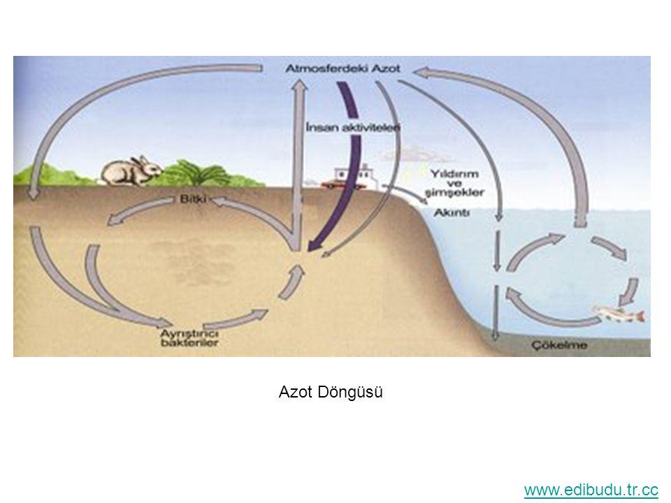 SU DÖNGÜSÜ Su, bazı doğal kuvvetler ve hava hareketleriyle atmosfer ile yer yüzündeki karalar ve sular arasında sistemli bir şekilde hareket etmektedir.Buna su döngüsü veya hidrolojik dolaşım denir.
