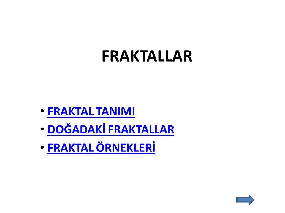 Bir şeklin belirli bir oranda büyültülmüş veya küçültülmüş modelleri ile elde edilen örüntülere FRAKTAL denir.