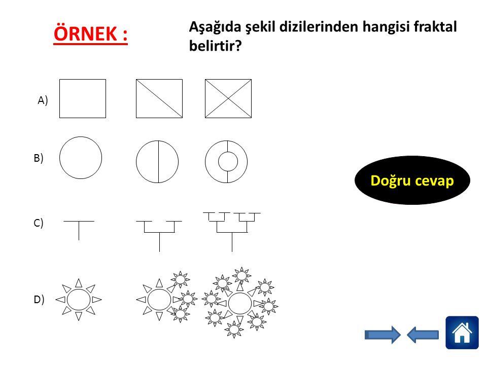 Aşağıda şekil dizilerinden hangisi fraktal belirtir? A) B) C) D) Doğru cevap ÖRNEK :