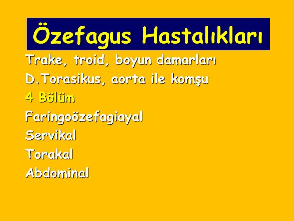 Özefagus Hastalıkları Trake, troid, boyun damarları D.Torasikus, aorta ile komşu 4 Bölüm FaringoözefagiayalServikalTorakalAbdominal