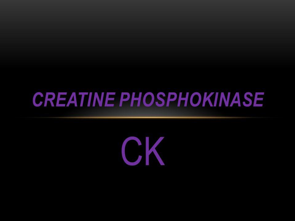 CK CREATINE PHOSPHOKINASE