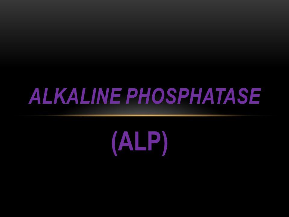 (ALP) ALKALINE PHOSPHATASE