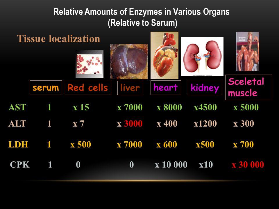 KLİNİK ENZİMOLOJİDE ENZİM ÖLÇÜMLERİ 1) Reaksiyon hızlarının ölçülmesi 2) Enzim kütlesinin ölçümü 3) İzoenzimlerin ve izoformların ölçümü