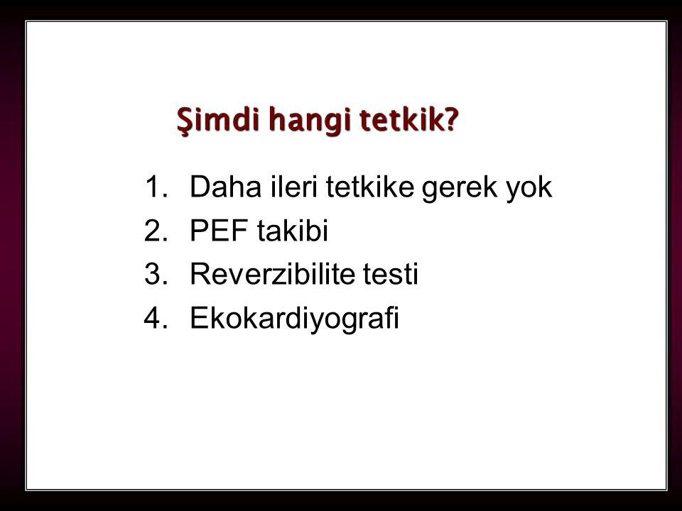 112 1.Daha ileri tetkike gerek yok 2.PEF takibi 3.Reverzibilite testi 4.Ekokardiyografi Şimdi hangi tetkik?
