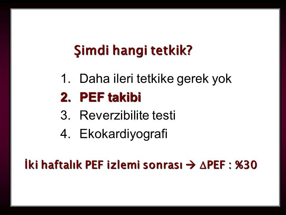 113 1.Daha ileri tetkike gerek yok 2.PEF takibi 3.Reverzibilite testi 4.Ekokardiyografi Şimdi hangi tetkik? İki haftalık PEF izlemi sonrası   PEF :