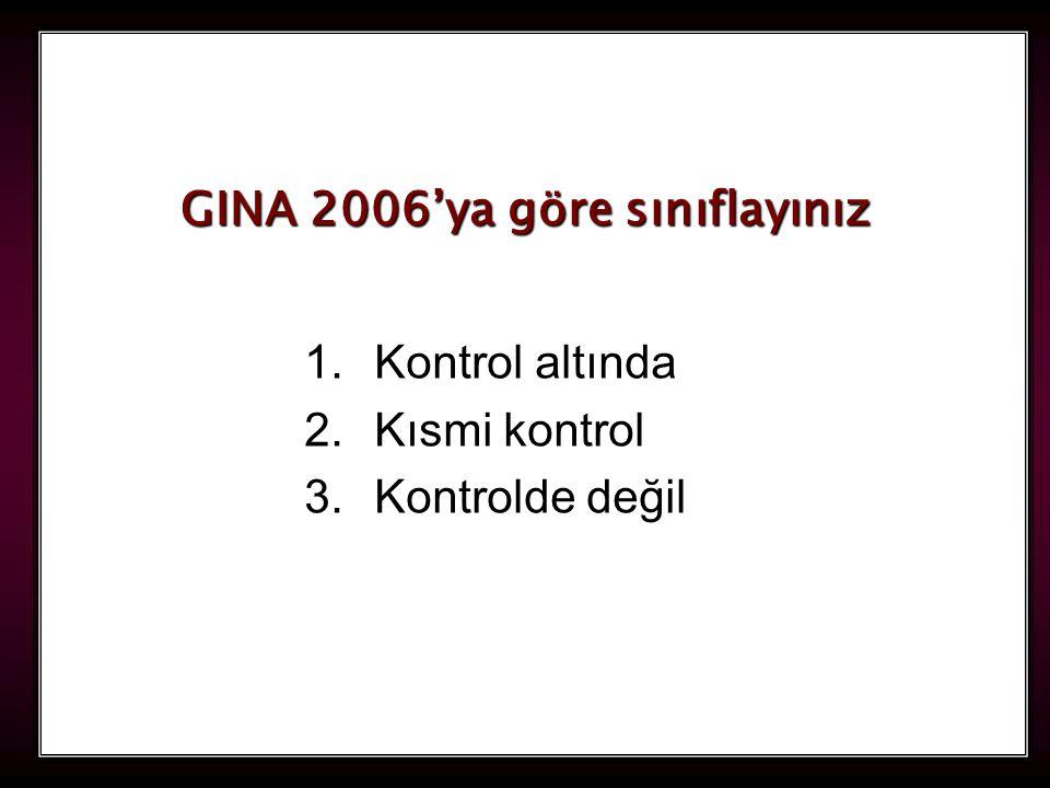 120 1.Kontrol altında 2.Kısmi kontrol 3.Kontrolde değil GINA 2006'ya göre sınıflayınız