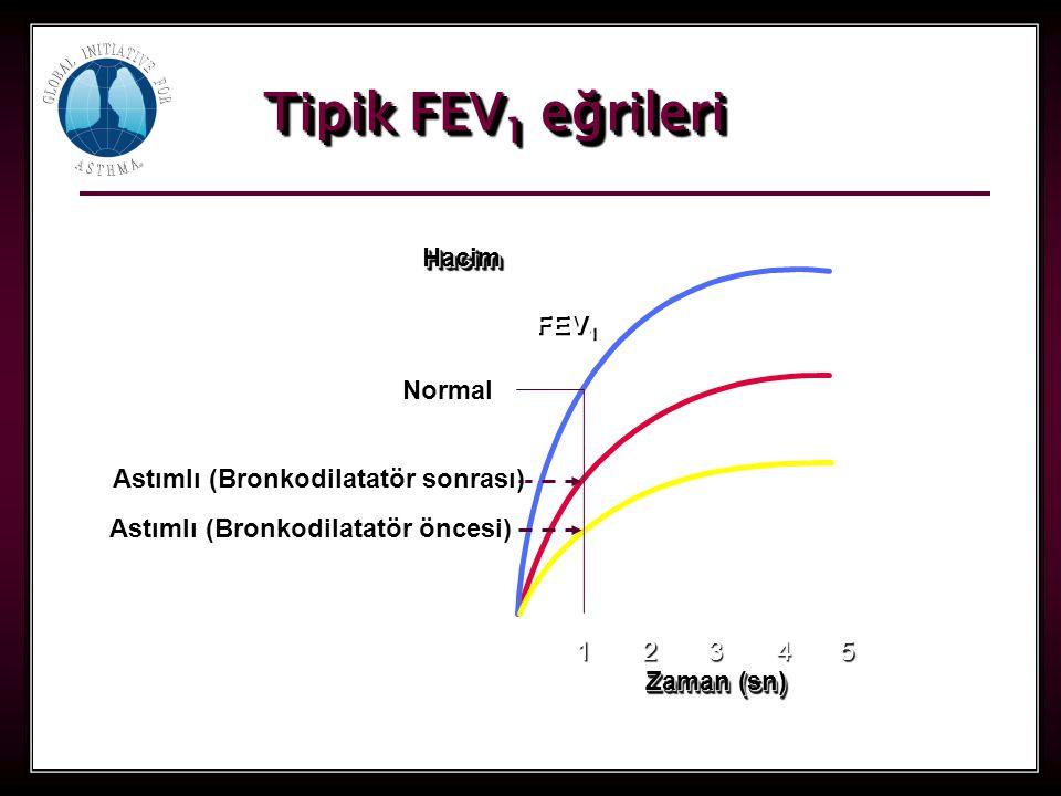 28 Tipik FEV 1 eğrileri 1 Zaman (sn) 2345 FEV 1 HacimHacim Normal Astımlı (Bronkodilatatör öncesi) Astımlı (Bronkodilatatör sonrası)