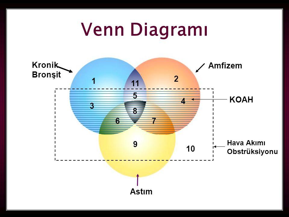 43 1 9 8 11 67 2 5 4 10 KOAH Hava Akımı Obstrüksiyonu Amfizem KronikBronşit Astım 3 Venn Diagramı