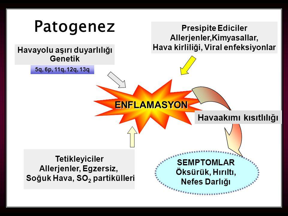 9 ENFLAMASYON Havaakımı kısıtlılığı SEMPTOMLAR Öksürük, Hırıltı, Nefes Darlığı Tetikleyiciler Allerjenler, Egzersiz, Soğuk Hava, SO 2 partikülleri Patogenez Havayolu aşırı duyarlılığı Genetik Presipite Ediciler Allerjenler,Kimyasallar, Hava kirliliği, Viral enfeksiyonlar 5q, 6p, 11q, 12q, 13q