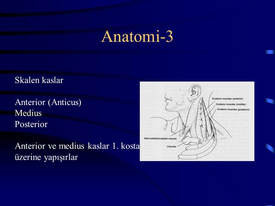 Anatomi-3 Skalen kaslar Anterior (Anticus) Medius Posterior Anterior ve medius kaslar 1. kosta üzerine yapışırlar