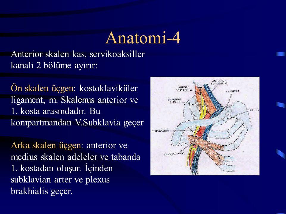 Anatomi-4 Anterior skalen kas, servikoaksiller kanalı 2 bölüme ayırır: Ön skalen üçgen: kostoklaviküler ligament, m. Skalenus anterior ve 1. kosta ara