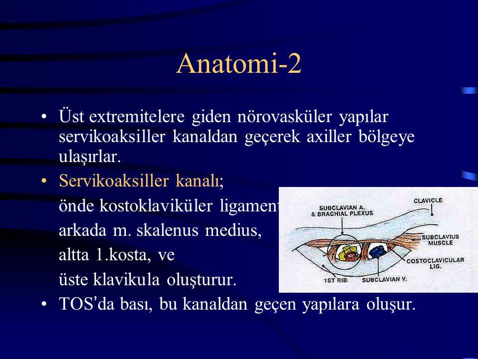 Anatomi-2 Üst extremitelere giden nörovasküler yapılar servikoaksiller kanaldan geçerek axiller bölgeye ulaşırlar. Servikoaksiller kanalı; önde kostok