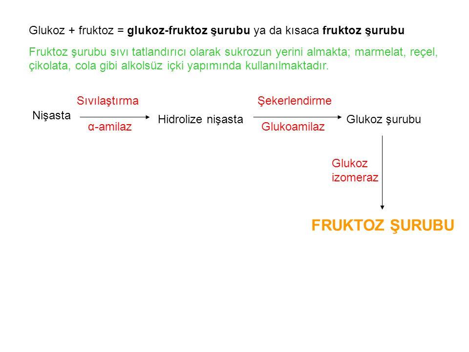Glukoz + fruktoz = glukoz-fruktoz şurubu ya da kısaca fruktoz şurubu Fruktoz şurubu sıvı tatlandırıcı olarak sukrozun yerini almakta; marmelat, reçel, çikolata, cola gibi alkolsüz içki yapımında kullanılmaktadır.