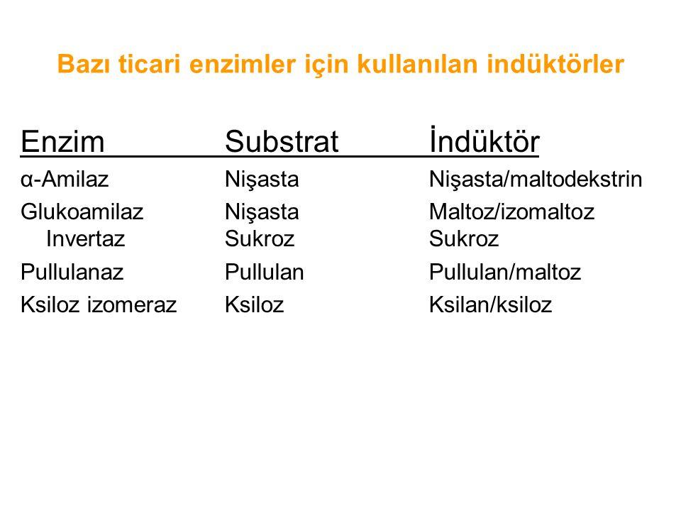 Bazı ticari enzimler için kullanılan indüktörler EnzimSubstratİndüktör α-Amilaz Nişasta Nişasta/maltodekstrin Glukoamilaz Nişasta Maltoz/izomaltoz Invertaz Sukroz Sukroz Pullulanaz Pullulan Pullulan/maltoz Ksiloz izomerazKsilozKsilan/ksiloz
