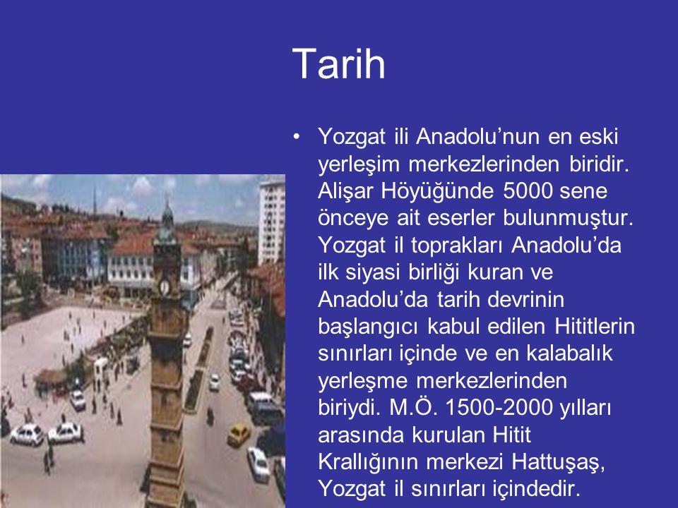 Tarih Yozgat ili Anadolu'nun en eski yerleşim merkezlerinden biridir. Alişar Höyüğünde 5000 sene önceye ait eserler bulunmuştur. Yozgat il toprakları