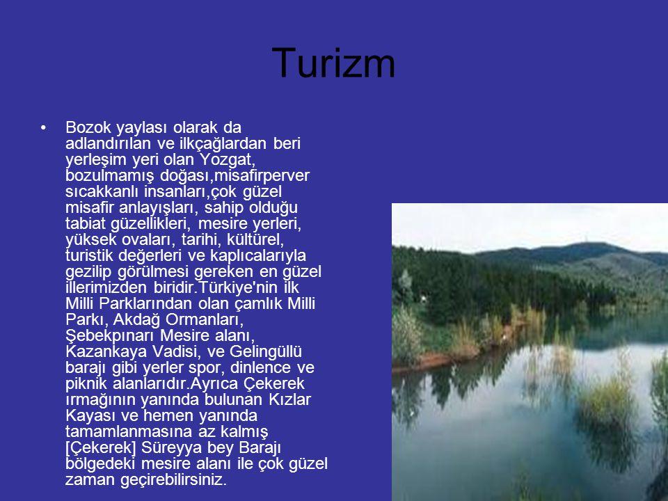 Turizm Bozok yaylası olarak da adlandırılan ve ilkçağlardan beri yerleşim yeri olan Yozgat, bozulmamış doğası,misafirperver sıcakkanlı insanları,çok g