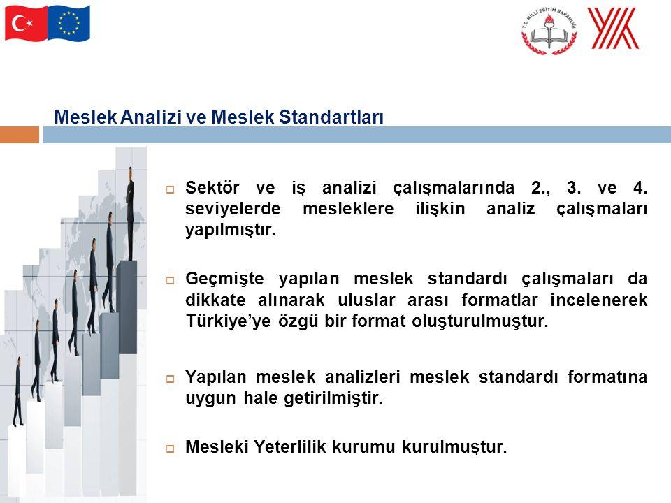 Meslek standartları ve meslek analizlerinden hareket edilerek mesleklere ilişkin yeterlilikler belirlenmiş ve eğitim öğretim programları için eğitim standardı hazırlanmıştır.