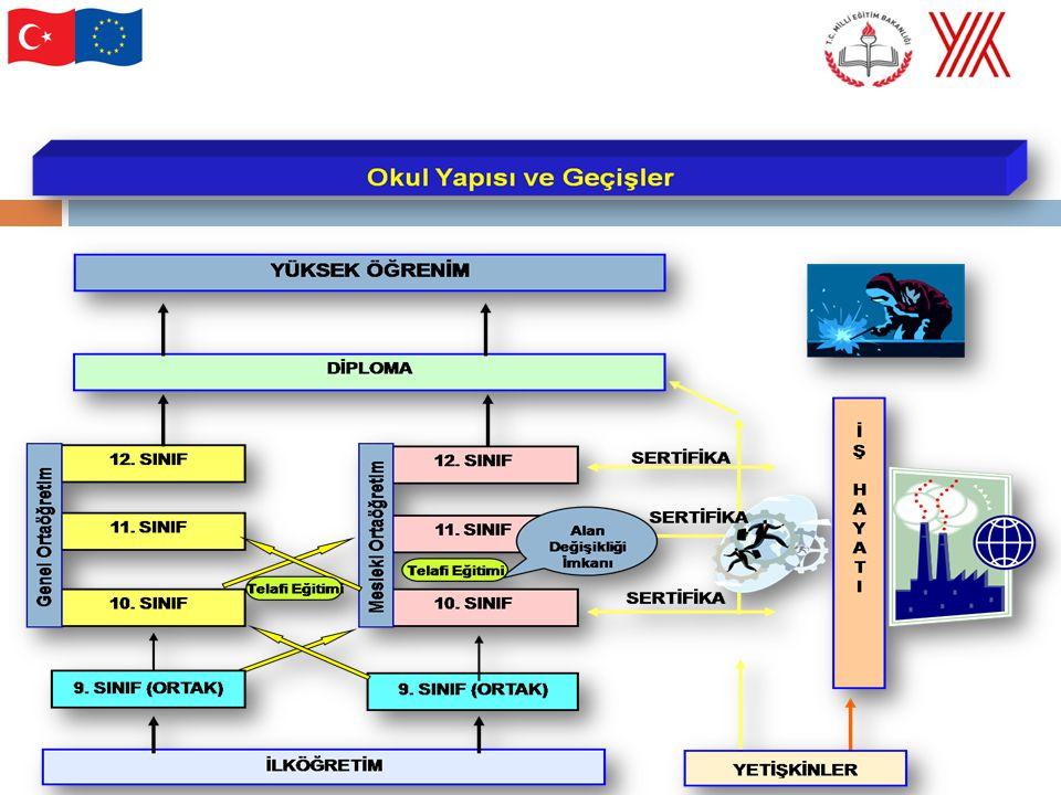 Program Yapısı (Motorlu Araçlar Teknolojisi Alanı ve Dalları)